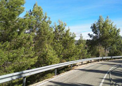 Ruta Sur de la Sierra del Segura
