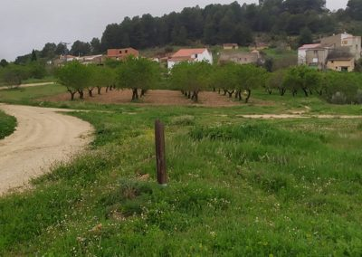 ES12. Fuente del Taif-Fuente Carrasca