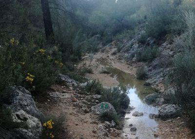 ES13. Ruta Fuente del Taif-Rubielo